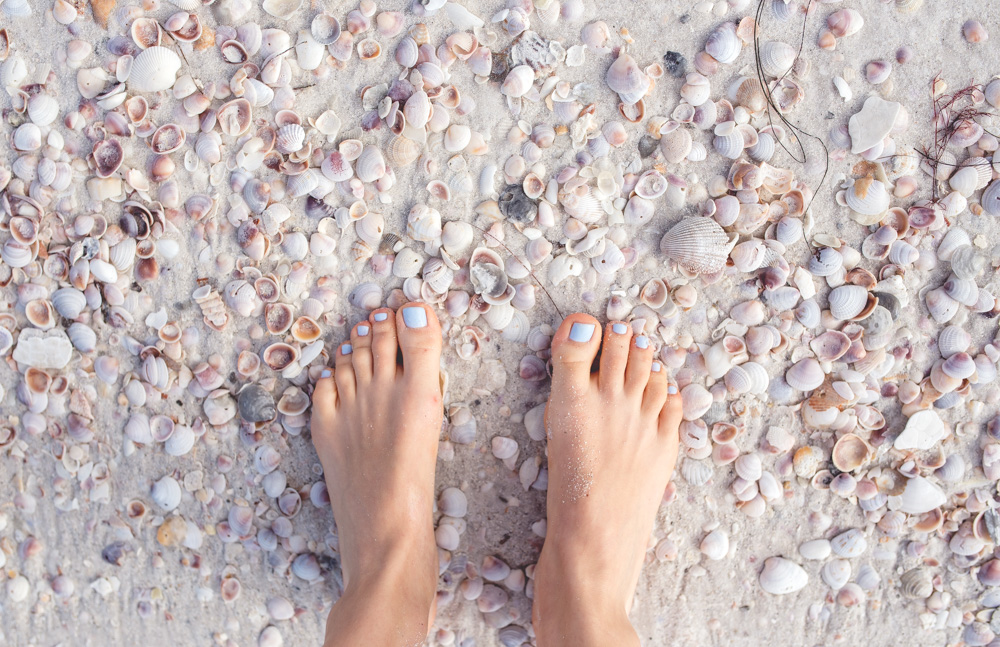 muszle na plazy
