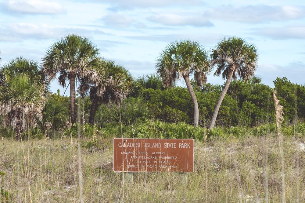 wyspa caladesi na florydzie