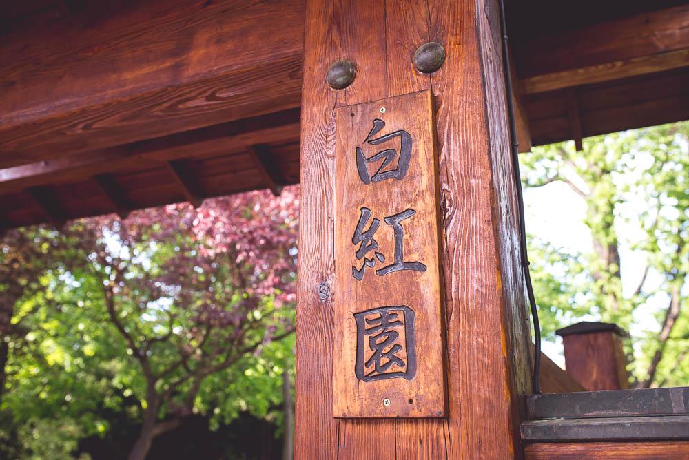 ogrod japonski wroclaw1