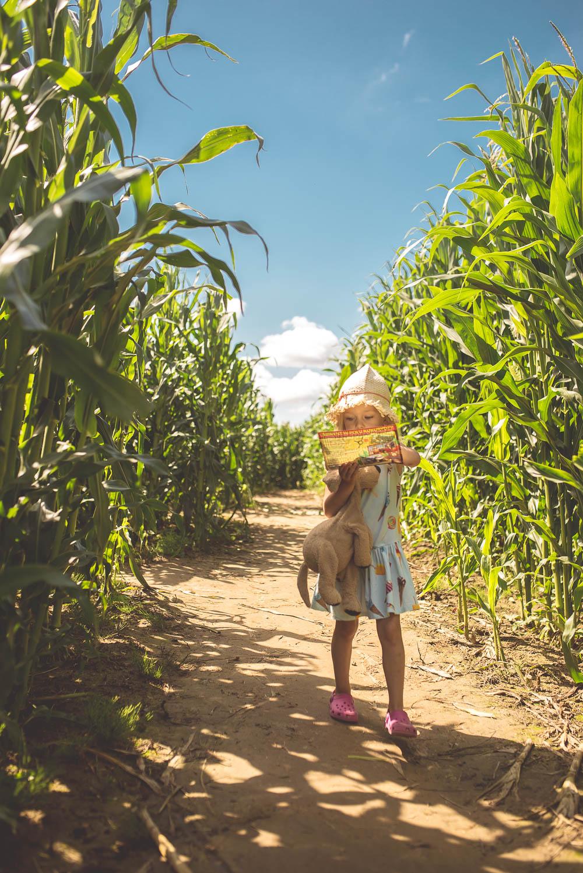 atrakcje dla dzieci labirynt w polu kukurydzy