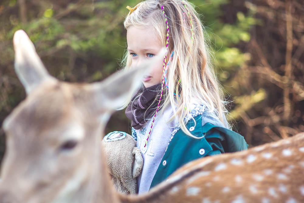 park dzikich zwierzat mazury
