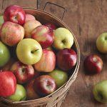jablka wartosci odzywcze