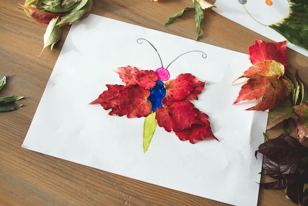 motyl z kolorowych lisci