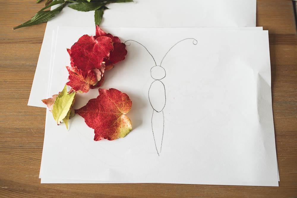 motyl z lisci