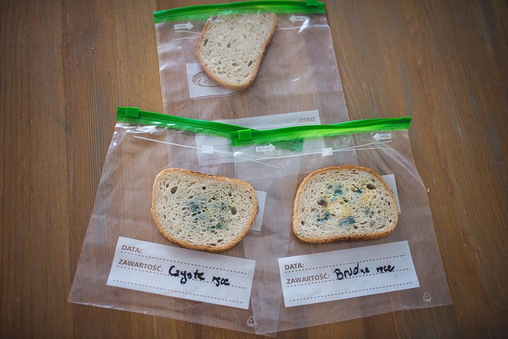 eksperyment z chlebem efekty
