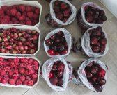 Zamrażanie warzyw i owoców, czyli moje sposoby na zimowe zapasy