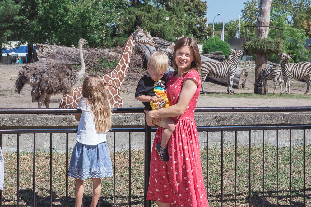 zyrafa irma